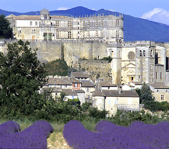 ChateauGrignan3